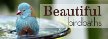 beautiful birdbaths always the lowest price
