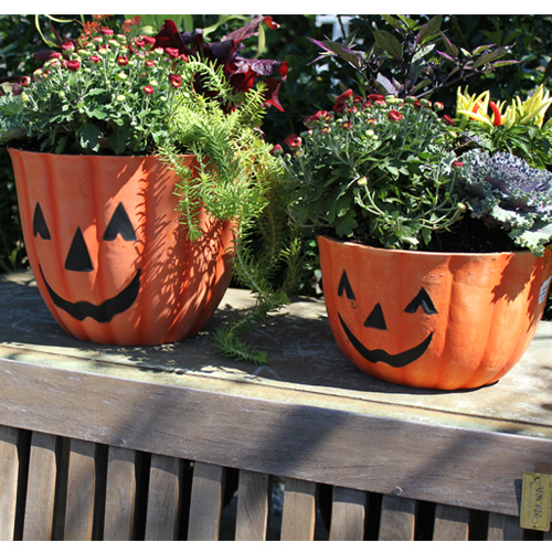 Austrum Pumpkin Planter