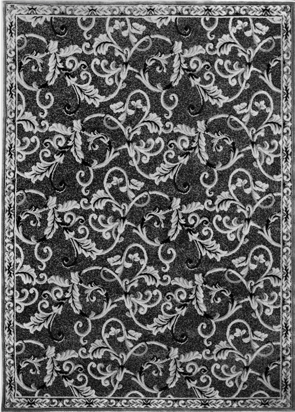 Rugs Modern Black Bordered Area Rug Contemporary Floral