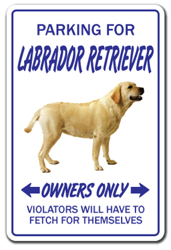 Labrador Retriever Novelty Sign Dog Pet Signs Funny Gift. 25 October Signs. Staff Kitchen Signs. Large Bowel Signs. Traffic Seattle Signs Of Stroke. Hardened Signs. Gender Neutral Signs Of Stroke. Recent Signs Of Stroke. February 2nd Signs Of Stroke