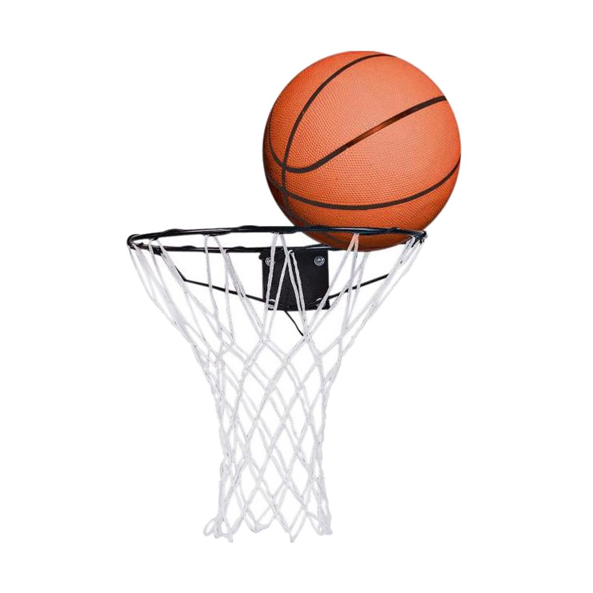 Ebay Outdoor Basketball Ring