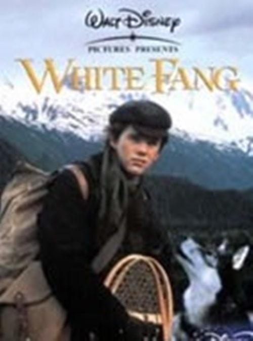 White-Fang-Ethan-Hawke-Disney-New-DVD-Region-4