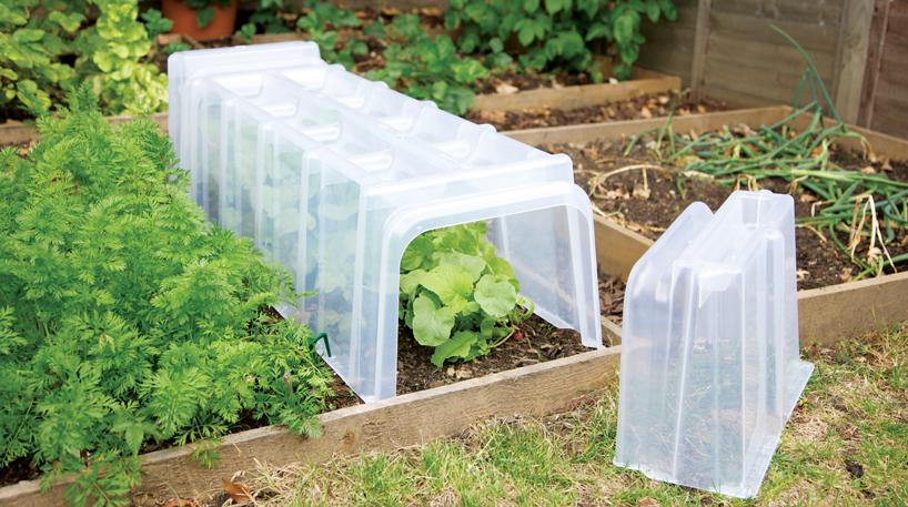 Stewart large complete kitchen garden cloche polytunnel for Garden cloche designs