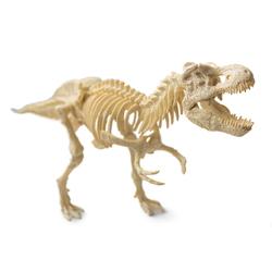 Dinosaur Fossil Set Tyrannosaurus Rex
