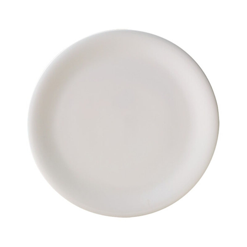 Denby Pottery China Dinner Plate