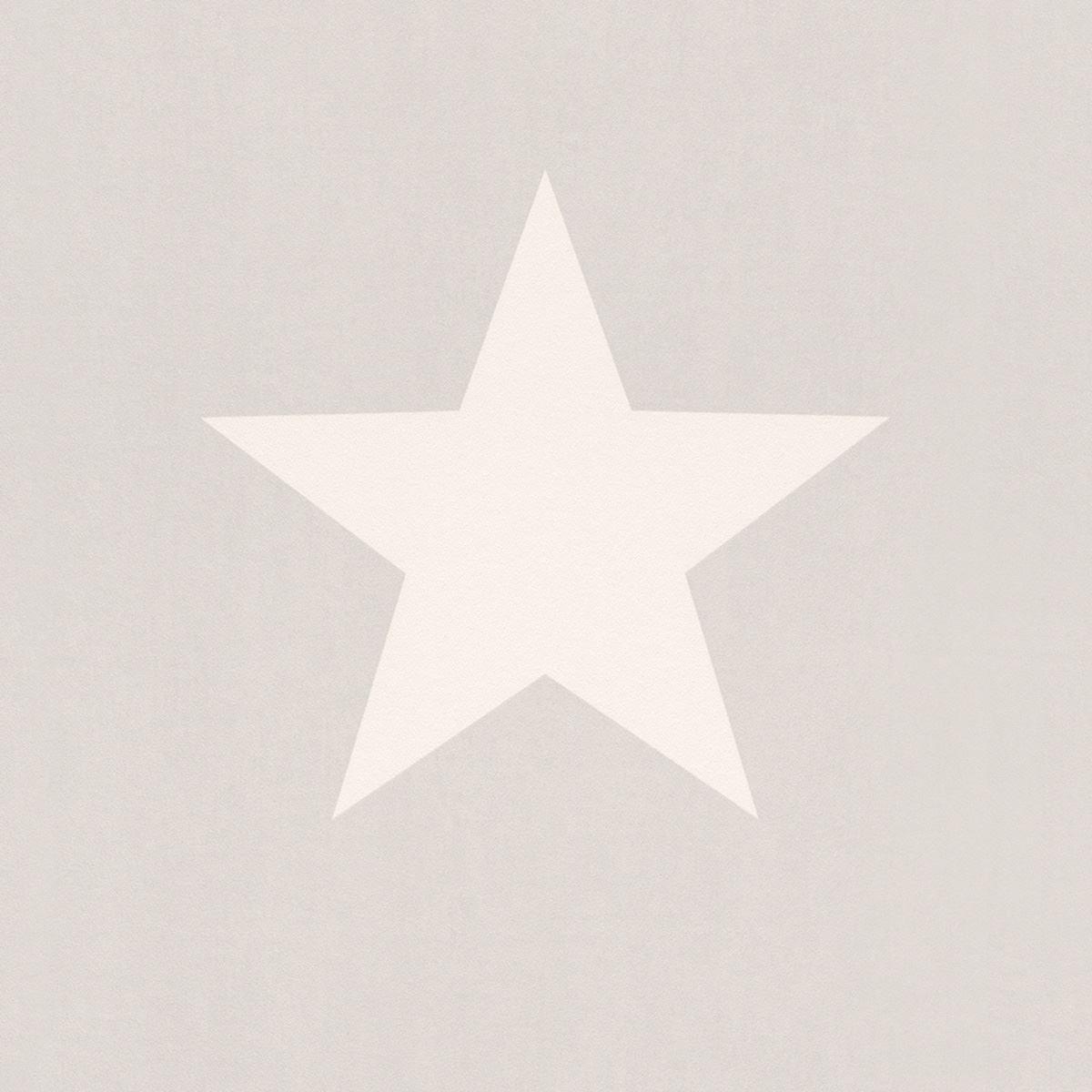 Star Wallpaper Teens Kids Stars Bedroom Feature Luxury White /& Grey By Rasch