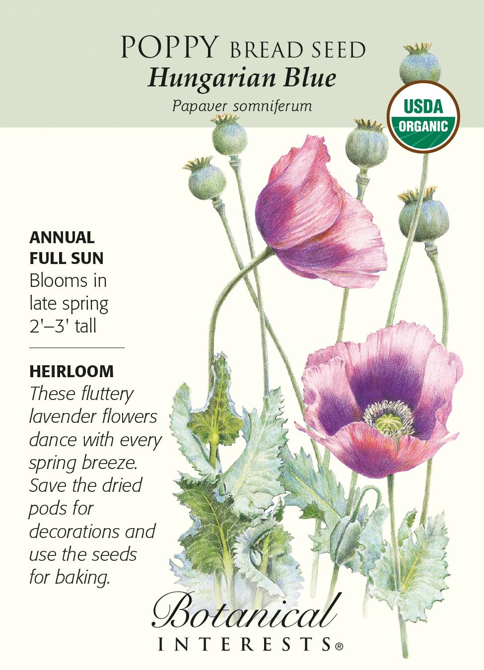 Hungarian Blue Poppy Bread Seed 250 Mg Organic Hirts Gardens