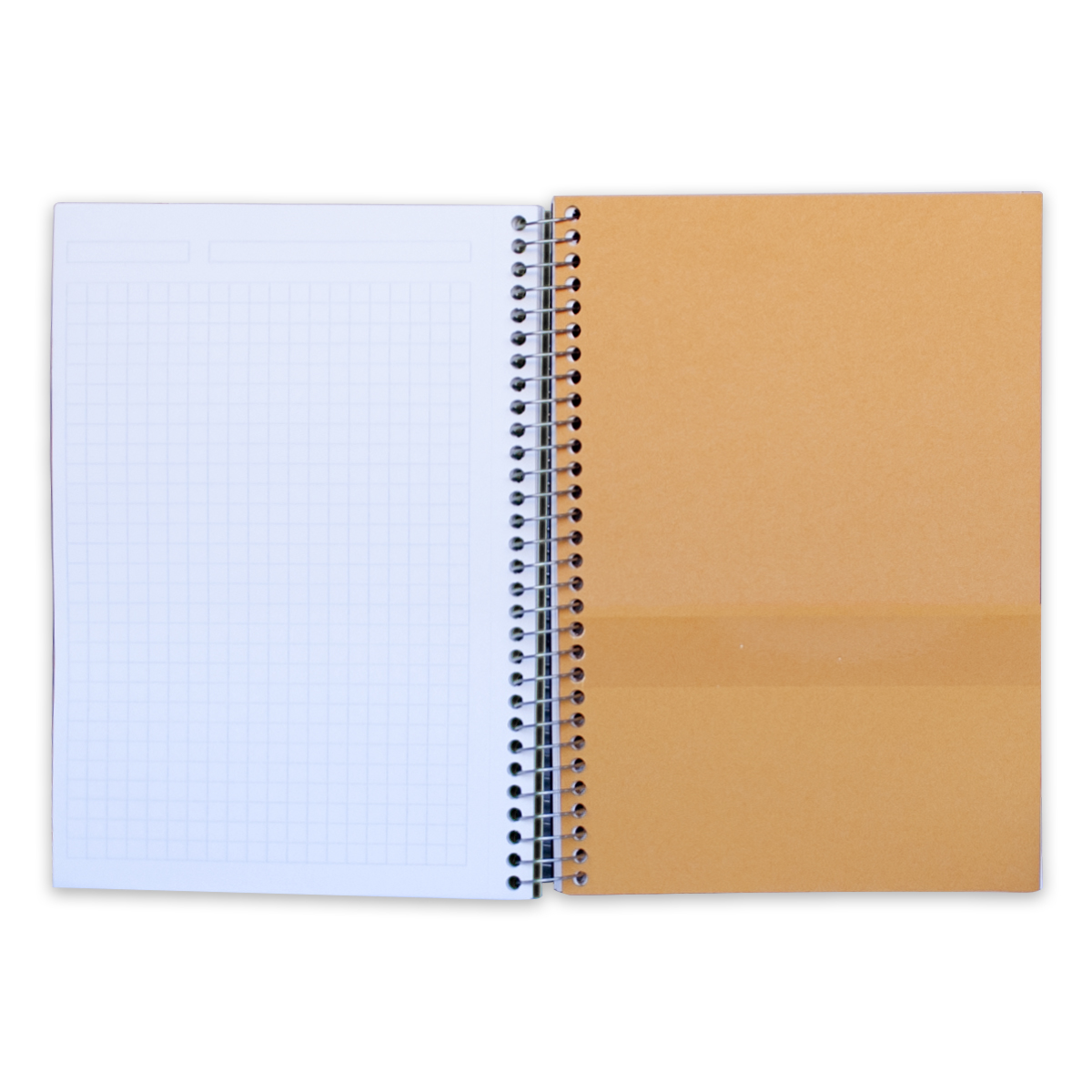 mead five star 3 subject wirebound notebook graph