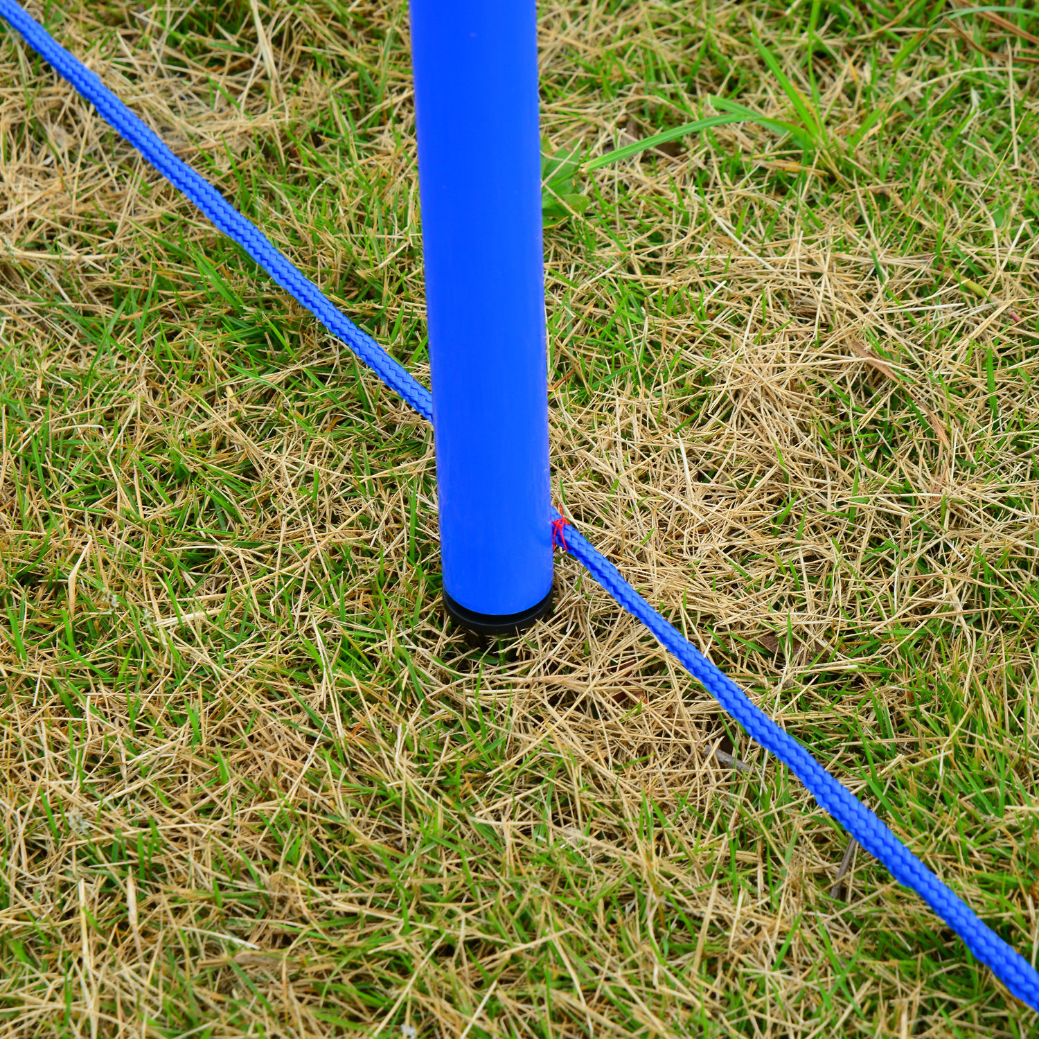 Pet-Agility-Set-Training-Play-Kit-Dog-Jump-Hoop-Poles-Tunnel-Obedience-Equipment