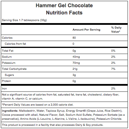 Hammer Nutrition Hammer Gel - Flavor: Chocolate - Size: Box of 24, Chocolate, large, image 2