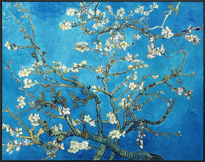 Framed Canvas Branches with Almond Blossom,1890 by Vincent Van Gogh ...