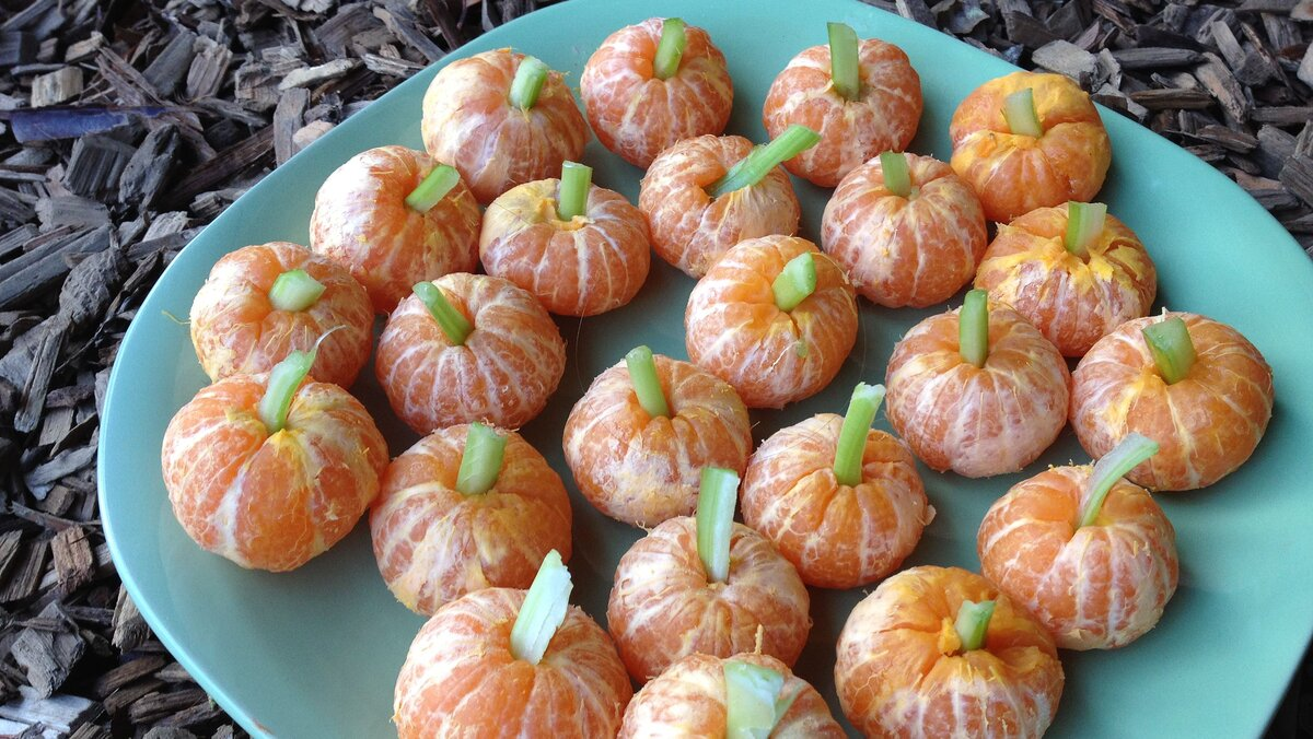 orange pumpkin, yescomusa, healthy halloween food