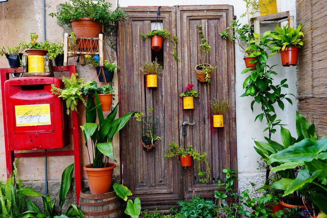 What Home Improvement Should I do First, yescomusa, backyard garden