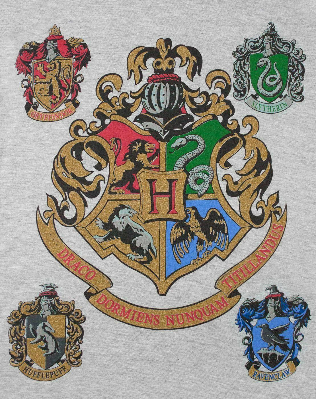 Harry-Potter-Hogwarts-Girl-039-s-Raglan-Long-Sleeved-T-Shirt thumbnail 11