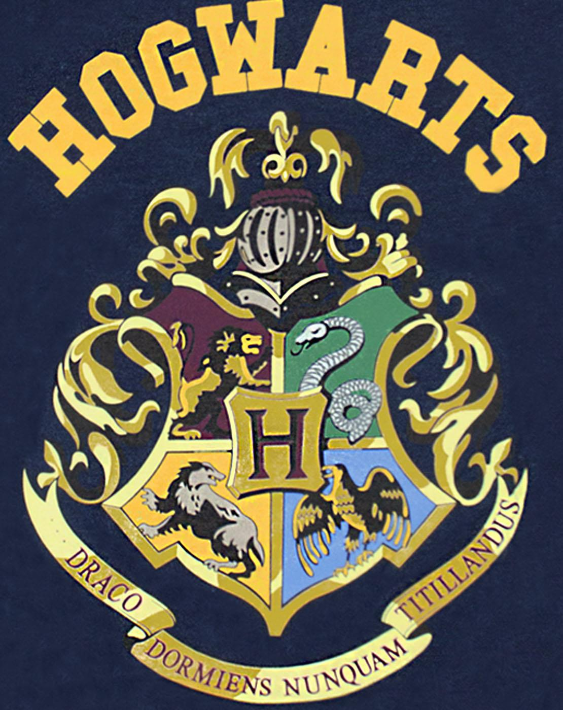 Harry-Potter-Hogwarts-Crest-Boy-039-s-Short-Sleeve-T-Shirt-in-Navy thumbnail 8