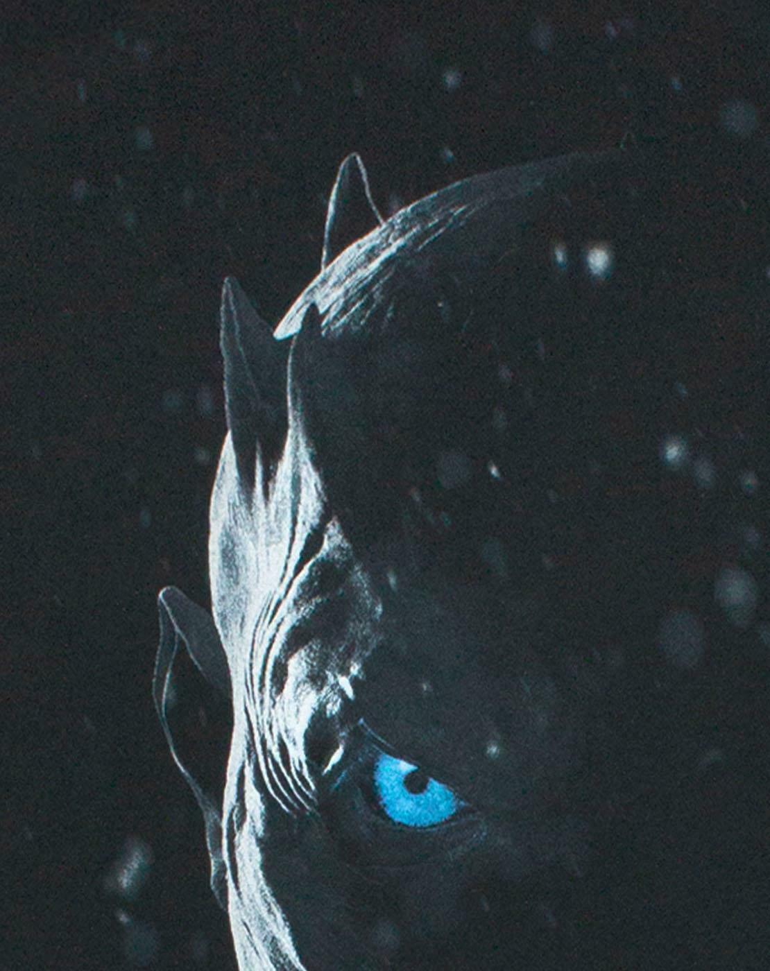 Game-Of-Thrones-Night-Ice-King-White-Walker-Leader-Men-039-s-Black-T-Shirt thumbnail 9