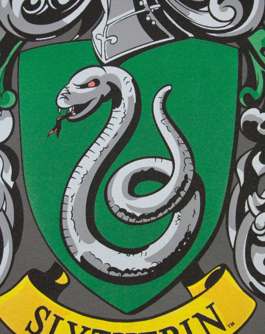 Harry-Potter-Slytherin-Women-039-s-Crew-Neck-Charcoal-T-Shirt thumbnail 8