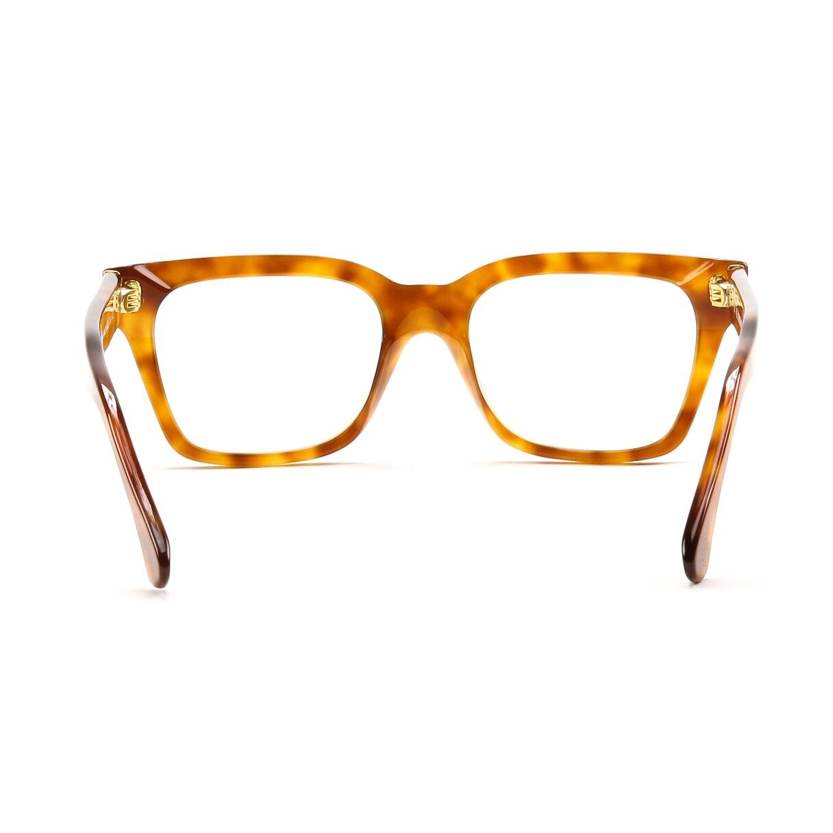 Zeiss Lenses For Eyeglasses | Green Communities Canada