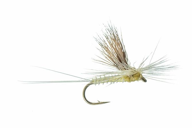 3 Flies Montana Fly Company Galloup/'s Peanut Envy Tan #2