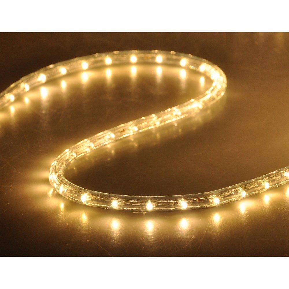 warm white led rope 150ft 110v 2 wire flexible diy lighting christmas outdoor ebay. Black Bedroom Furniture Sets. Home Design Ideas