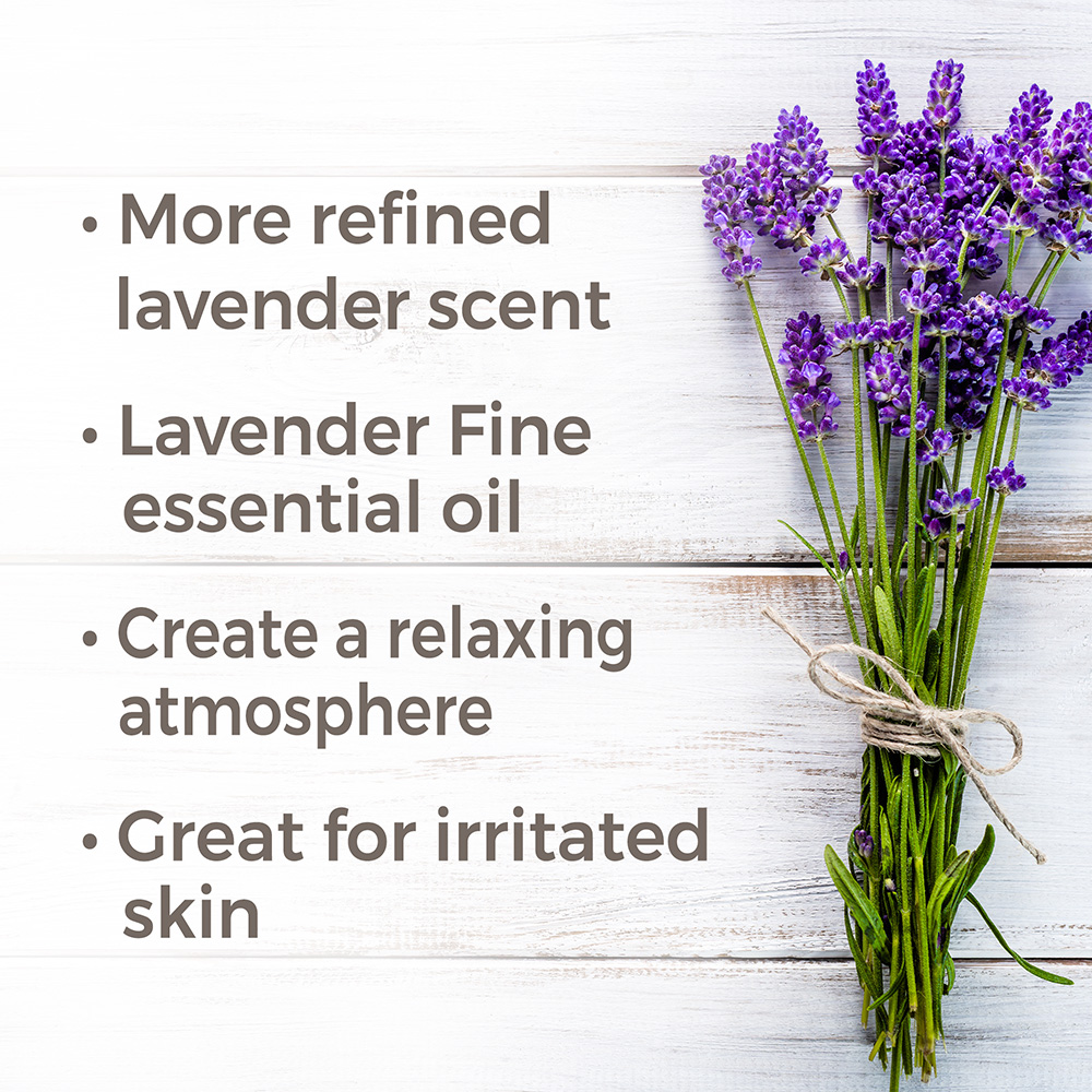 Plant-Therapy-Essential-Oils-Lavender-Fine-Organic-100-Pure-Undiluted thumbnail 3