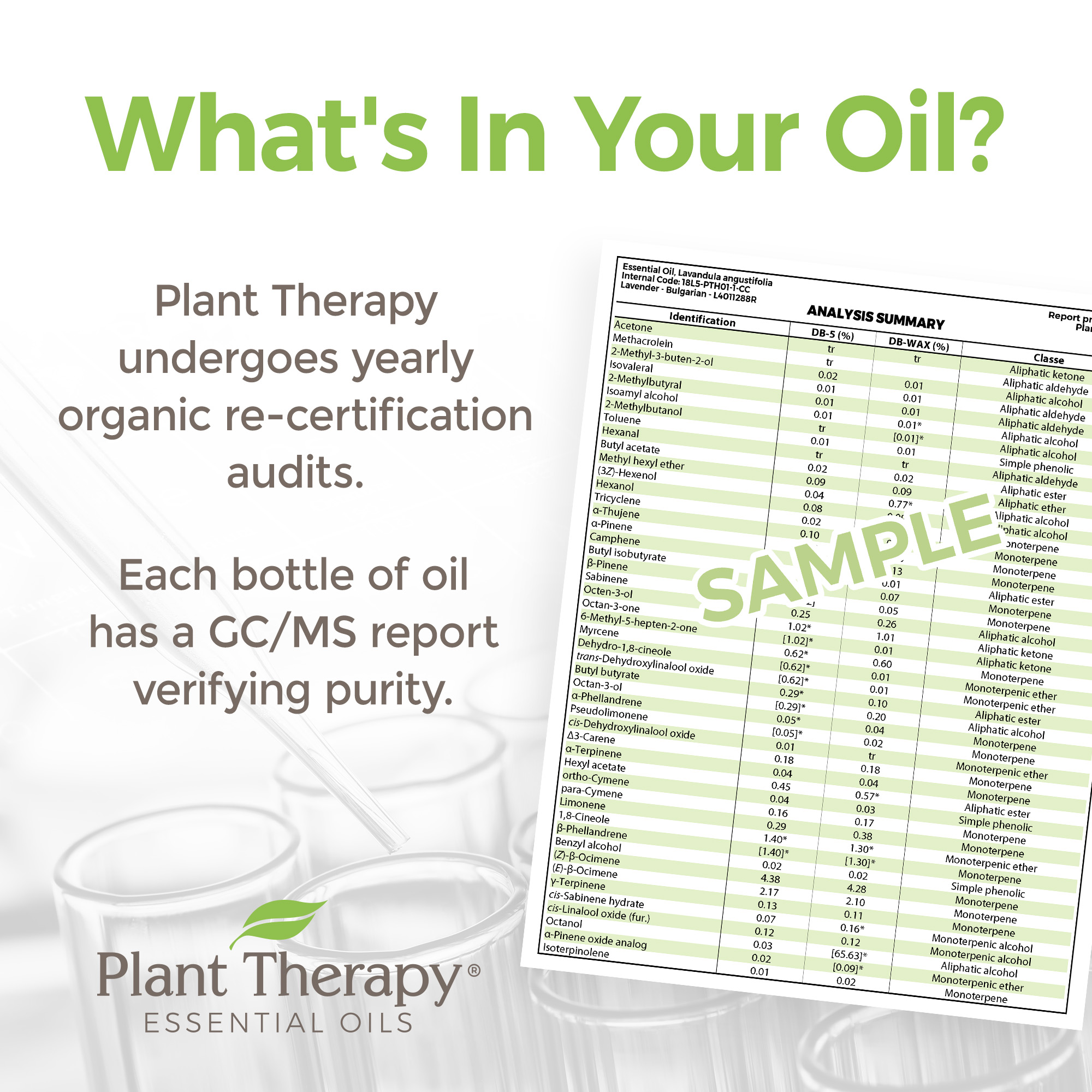 Plant-Therapy-Lavender-Organic-Essential-Oil-100-Pure-Undiluted thumbnail 5