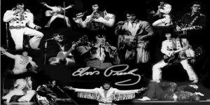 ELVIS Presley All Over Black Photo License Plate