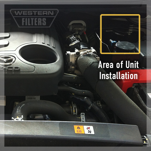 Oil filter mazda bt 50 oil free engine image for user for Ford ranger motor oil type
