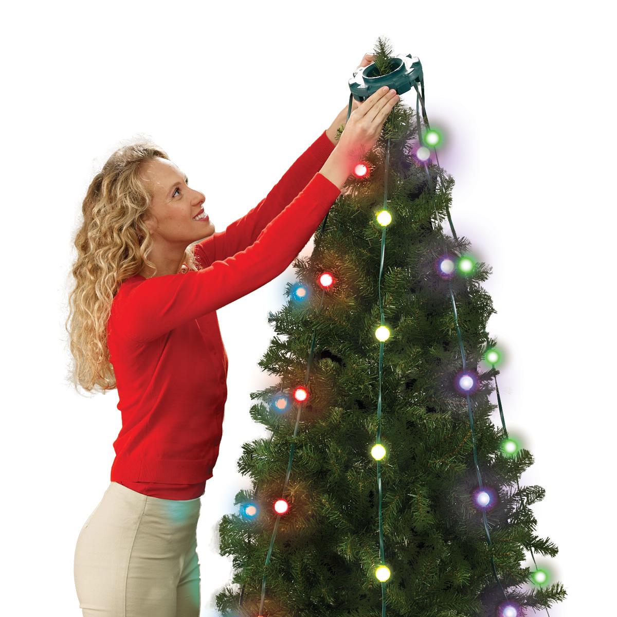 """Képtalálat a következőre: """"Tree Dazzler"""""""