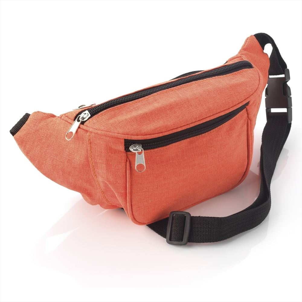 Travel Blue Waist Bag