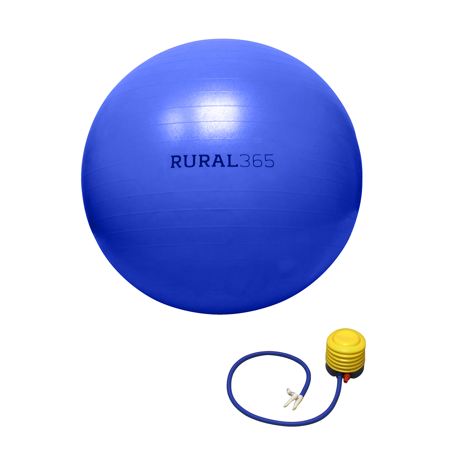 Rural365-Large-Horse-Ball-Toy-Anti-Burst-Giant-Horse-Ball-with-Hand-Pump thumbnail 8
