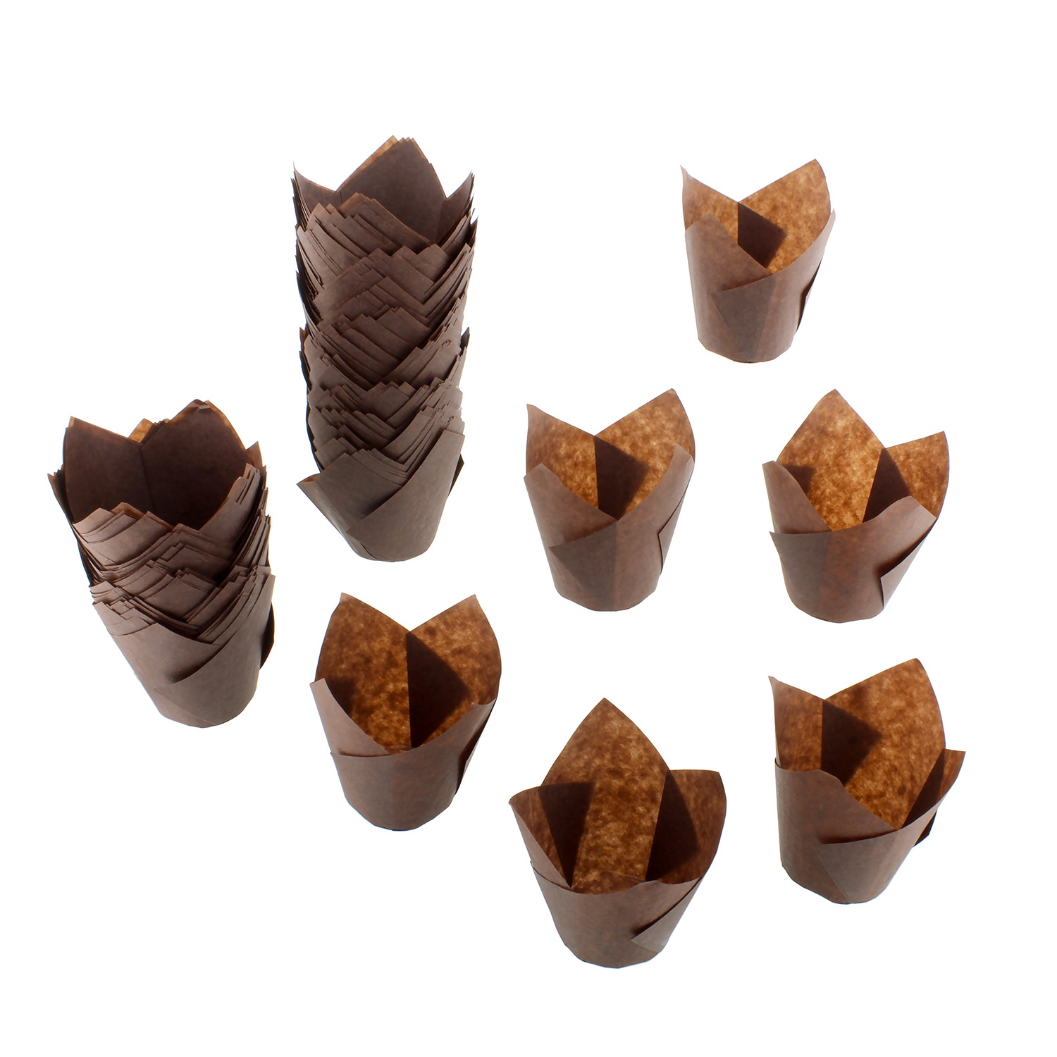 Specialt Tulip Cupcake Liners 200 Ct Brown Tulip Style