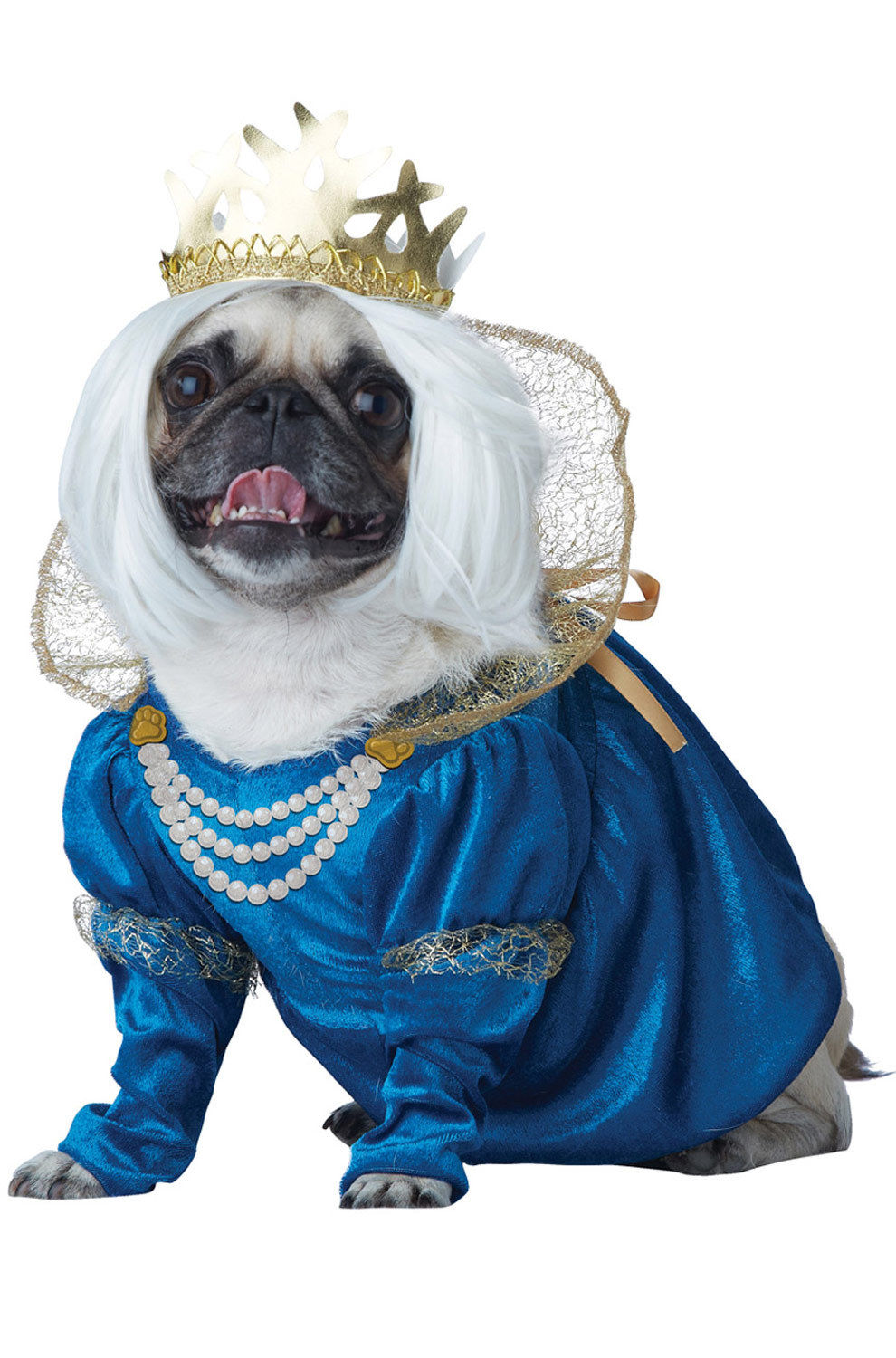 Responsive image  sc 1 st  eBay & Medieval Queen of Bones Pet Dog Costume Dress Wig Crown Princess ...