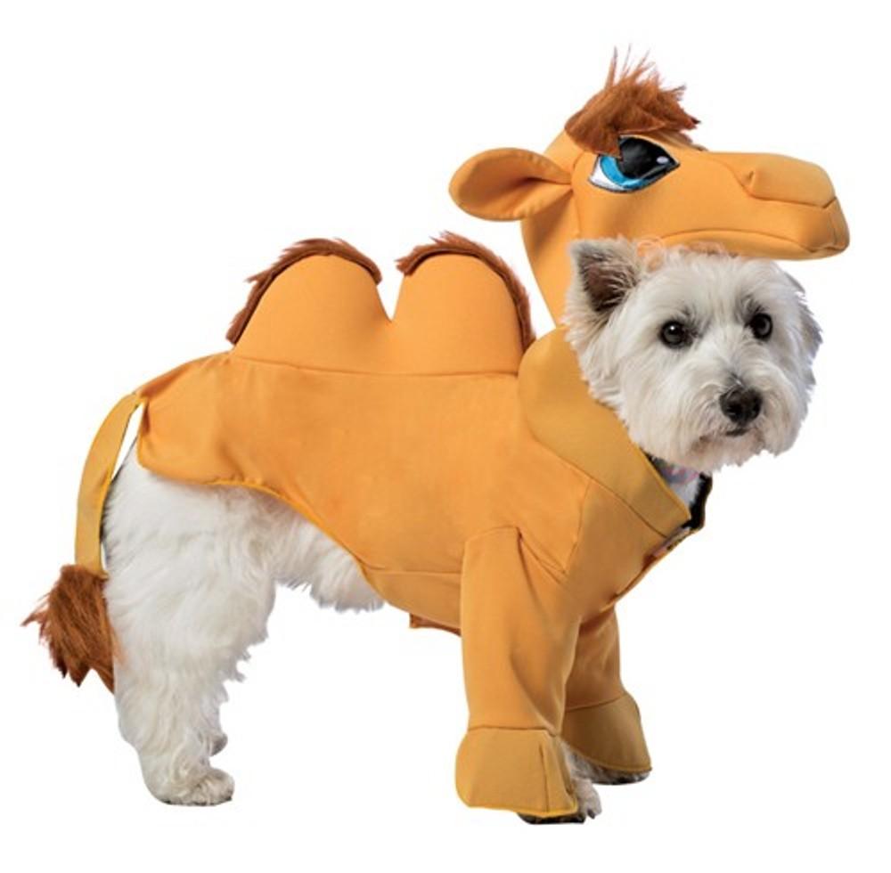 Hump Day Toys : Funny rasta imposta camel dog pet costume halloween desert