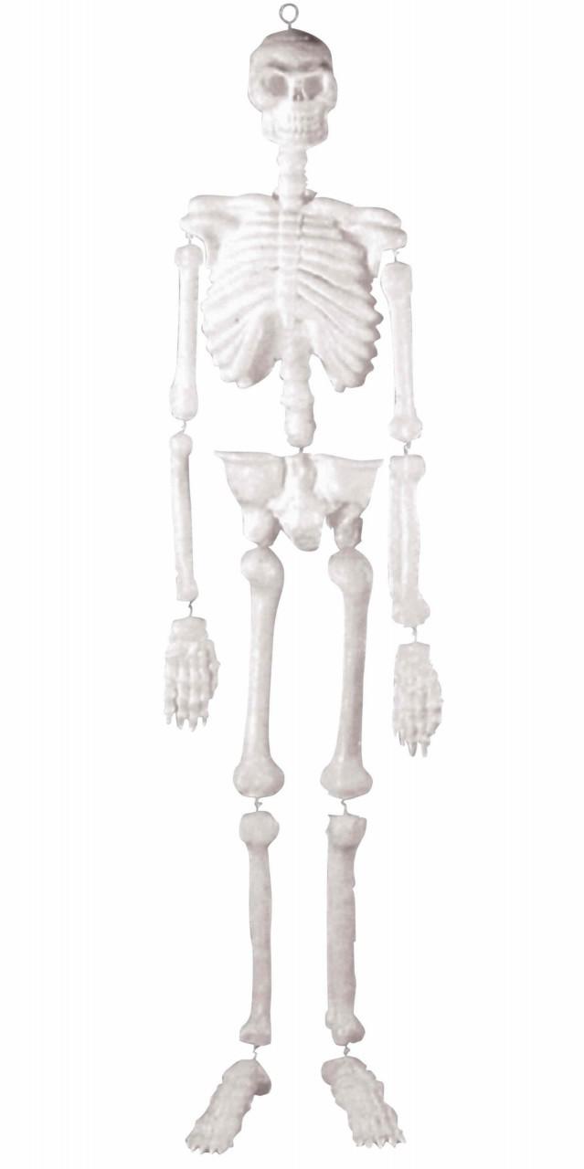 Lab Skeleton Skull Bones Life Size 5\' Foot Hanging Halloween Prop ...