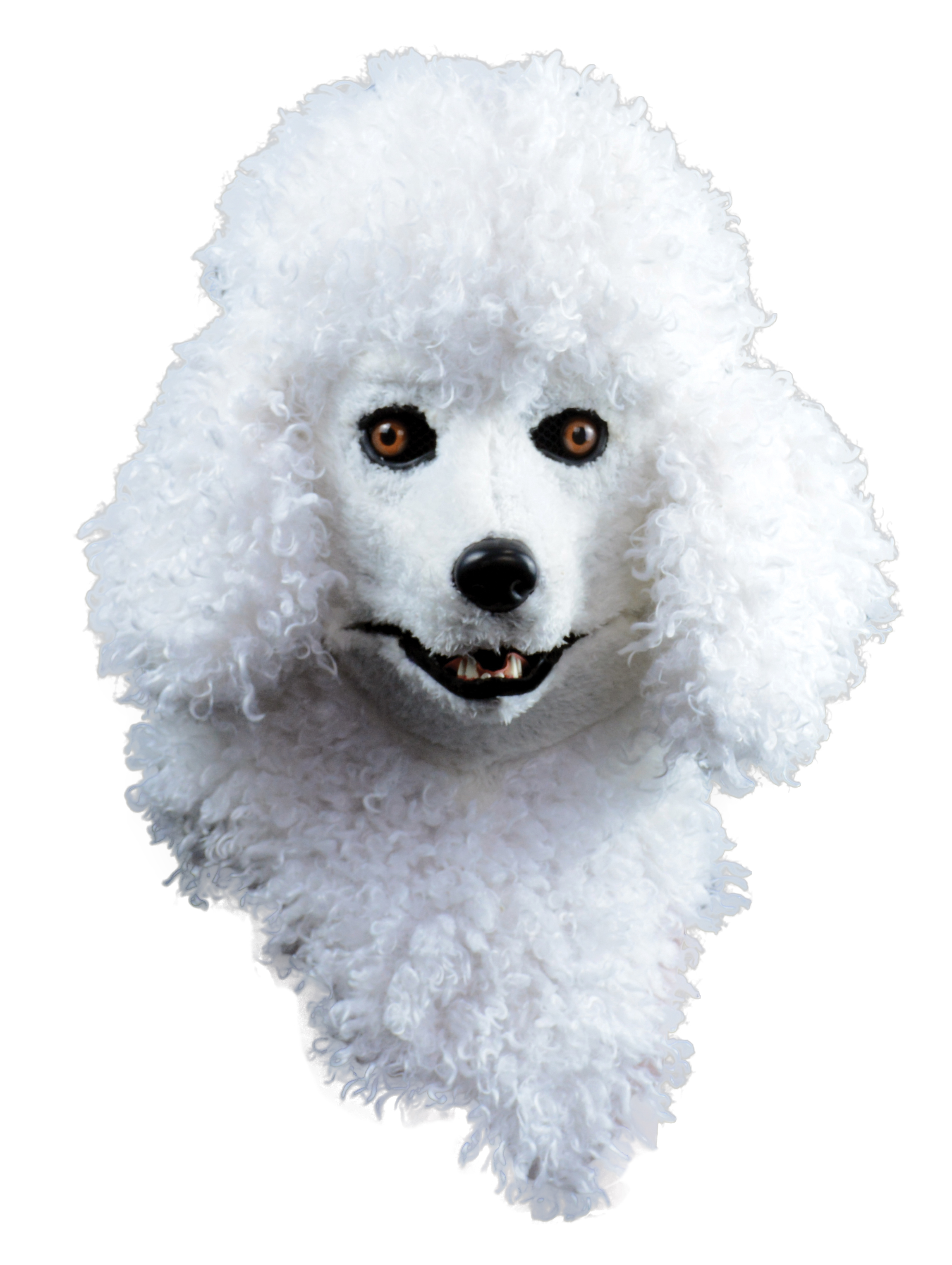 Adult Size Canine Dog Poodle Mask With Moving Jaw Halloween Costume  Accessory