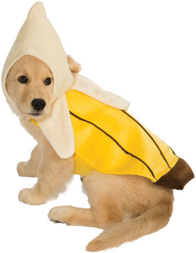 Banana Suit Food Pet Dog Clothing Accessory Halloween Costume SIZED  sc 1 st  eBay & Banana Suit Food Pet Dog Clothing Accessory Halloween Costume SIZED ...