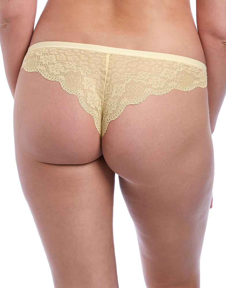 Freya-Fancies-Brief-Brazilian-Low-Rise-1017-Sheer-Lace-Knickers-Lingerie thumbnail 8