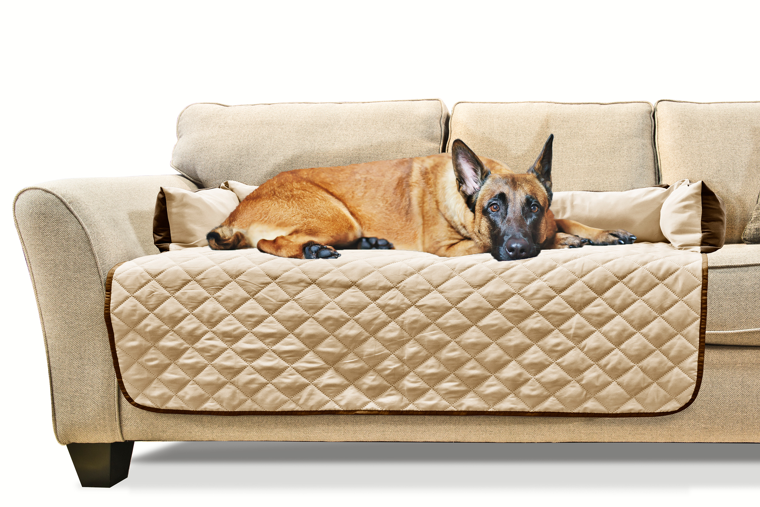 covered dog bed furhaven sofa buddy pet bed furniture cover ebay 28760