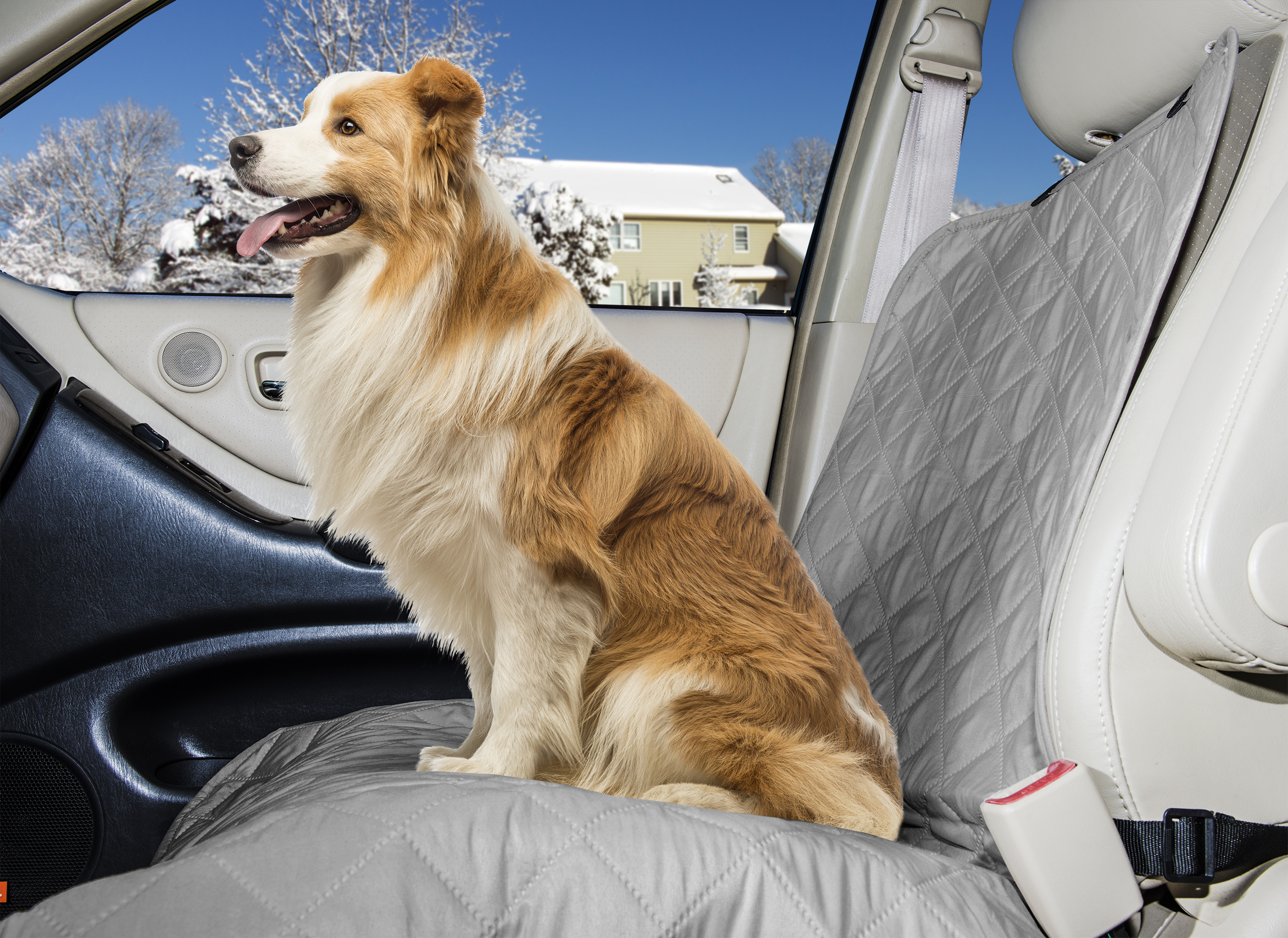 Top Paw Bench Seat Cover