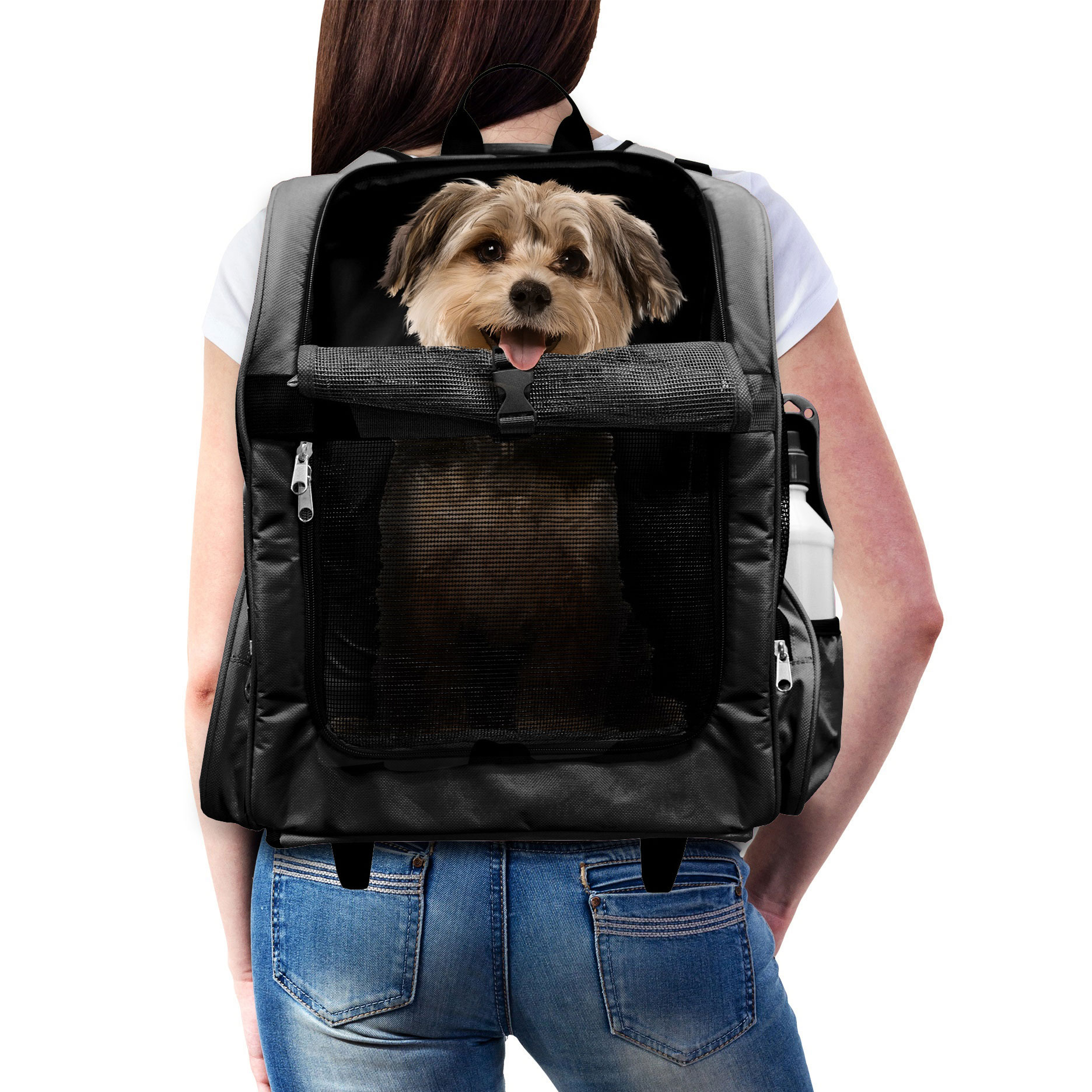 Dog And Cat Carriers