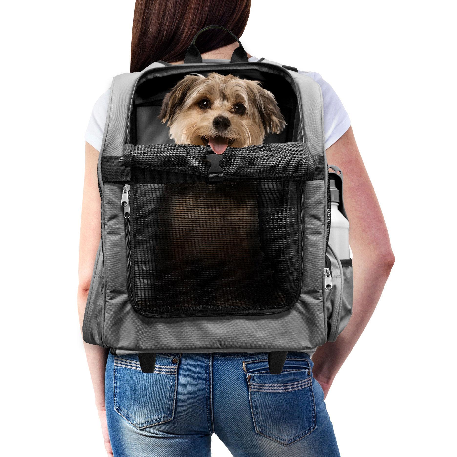 Furhaven Pet Backpack Roller Carrier Travel Pet Carrier