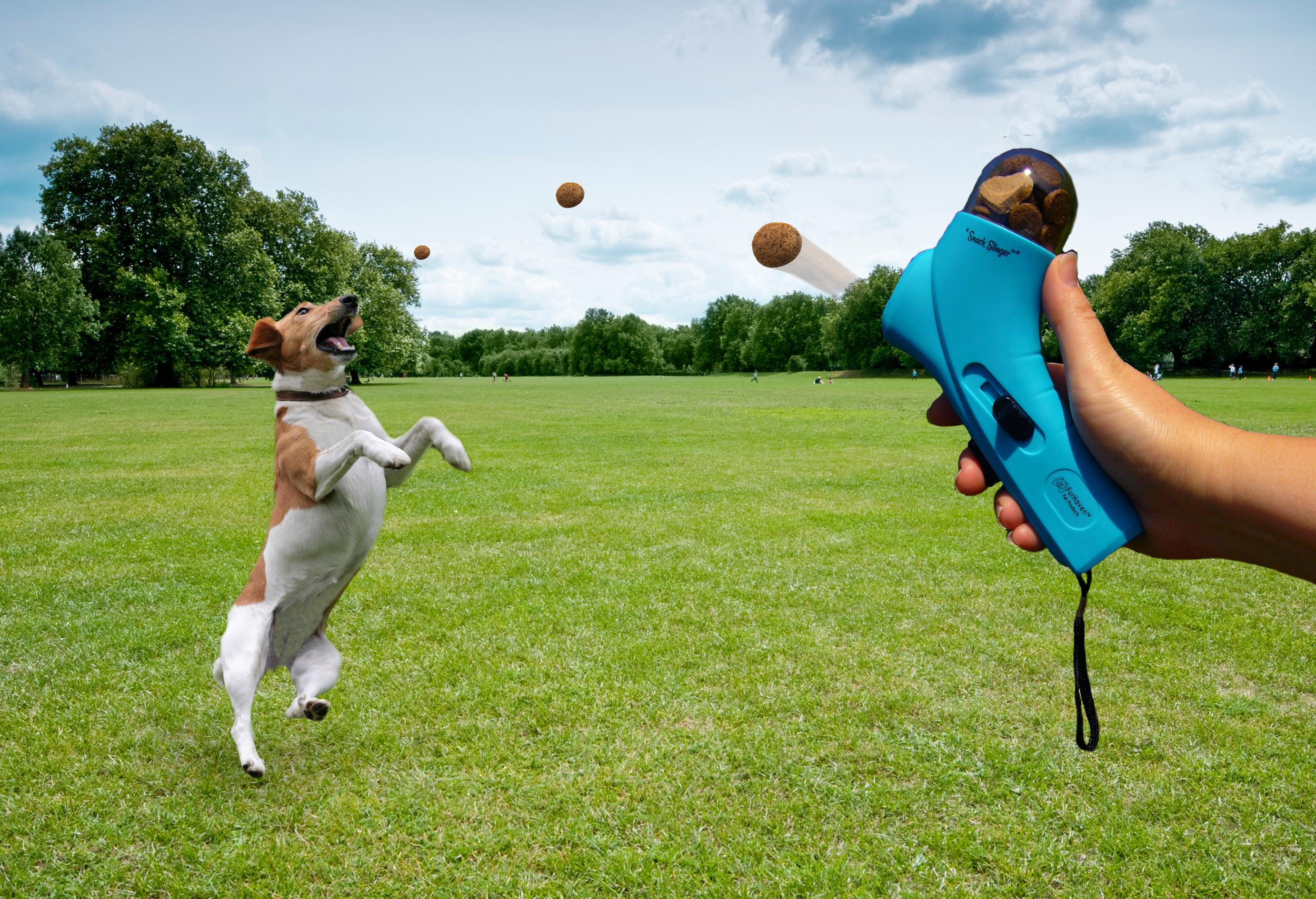 Resultado de imagen de lanzador premios perros