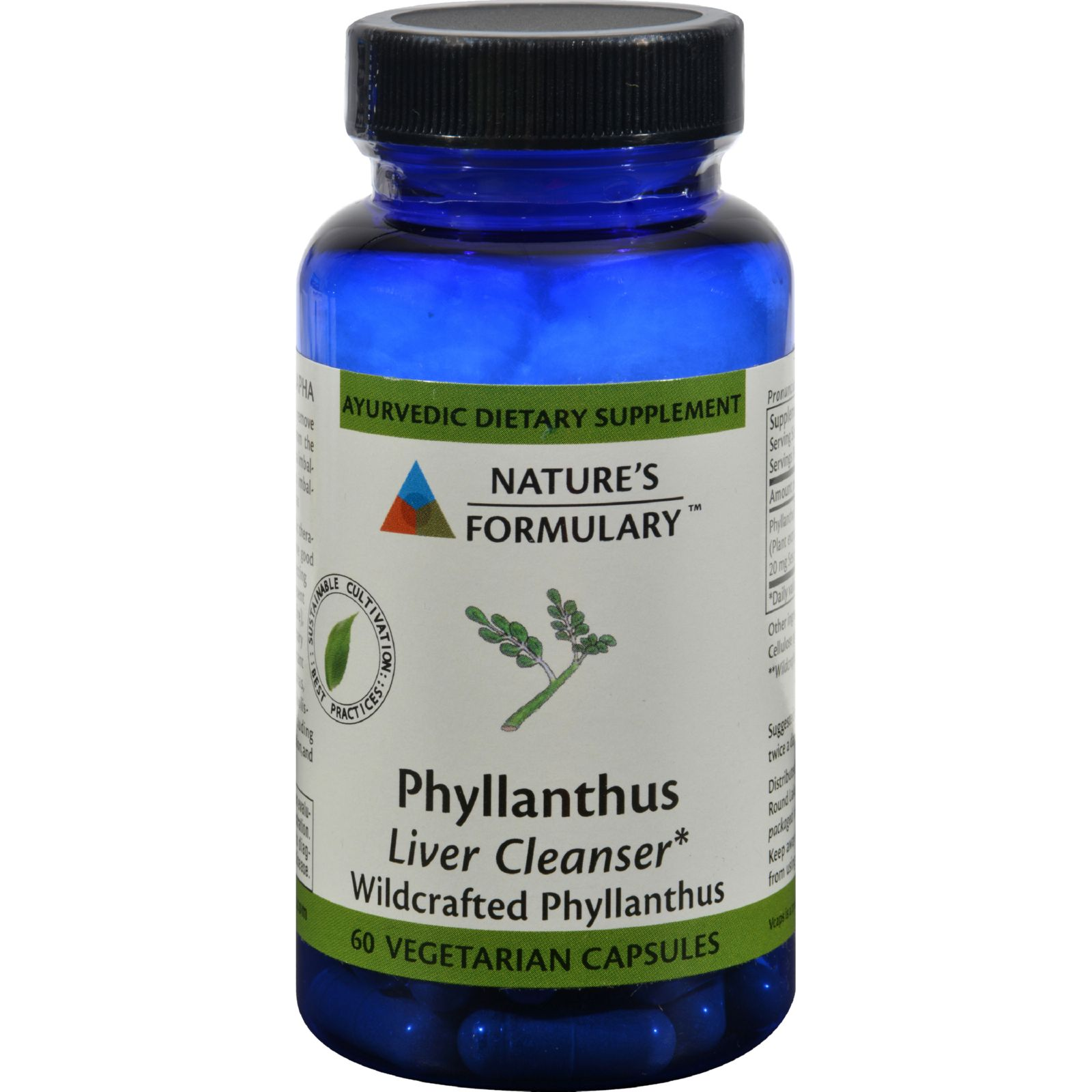 Nature's Formulary Phyllanthus - 60 Vegetarian Capsules