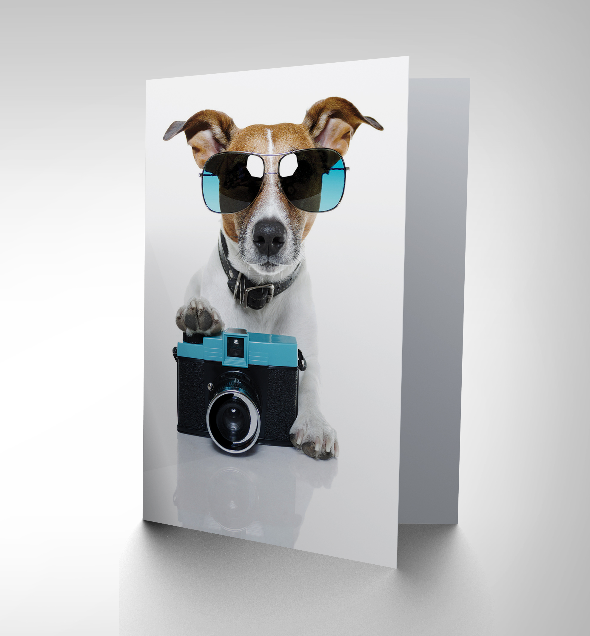 NEW COOL JACK RUSSELL DOG CAMERA PHOTO SUNGLASSES BLANK