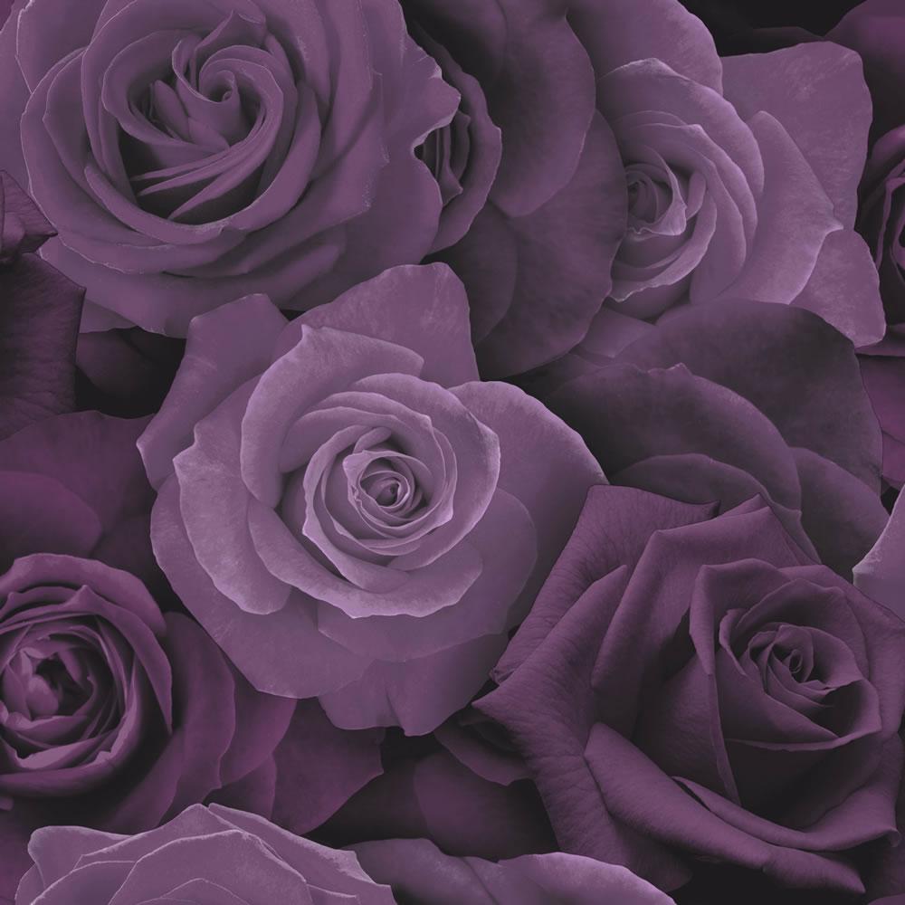 Arthouse Purple Roses Flower Wallpaper 3d Heavyweight Modern