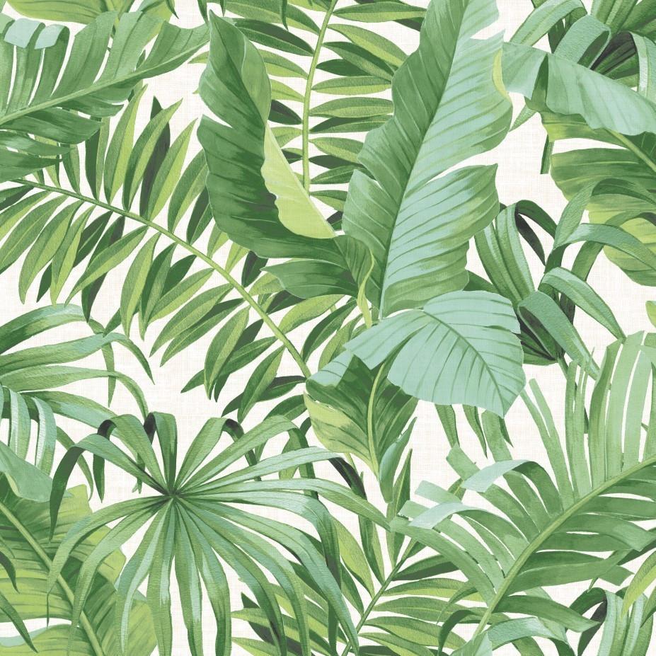 Tropical Jungle Wallpaper Leaf Palm Leaves Trees Birds ...