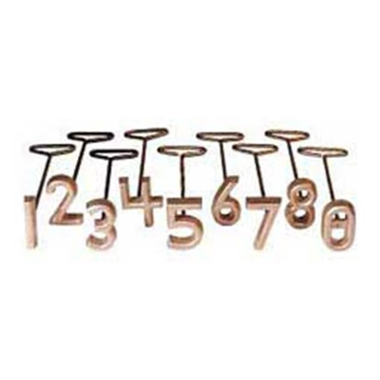 Details about Freeze Branding Iron Brass Set 2