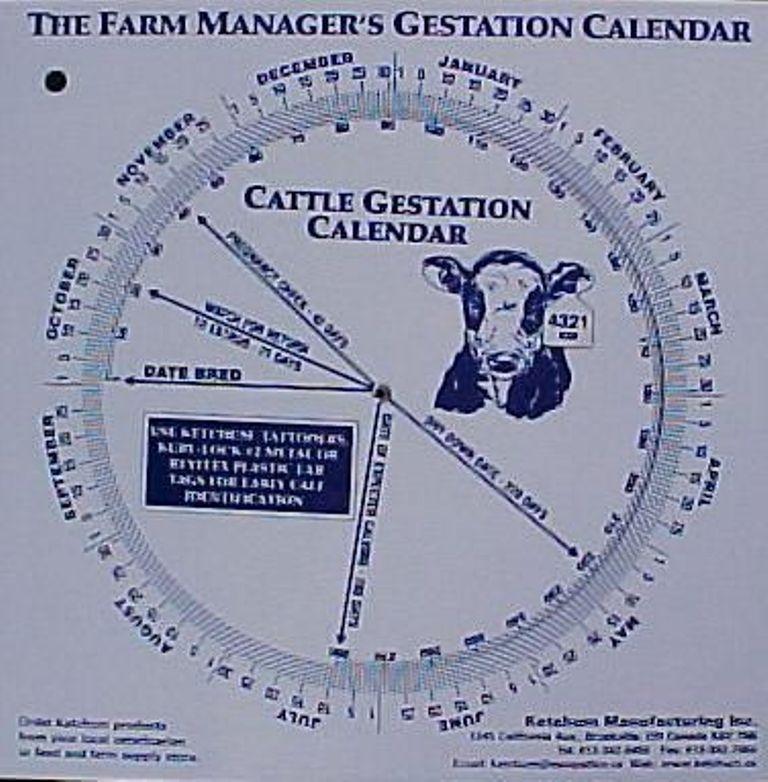 Goat Gestation Calendar Calculate Birth Breeding Conception Birthing Date