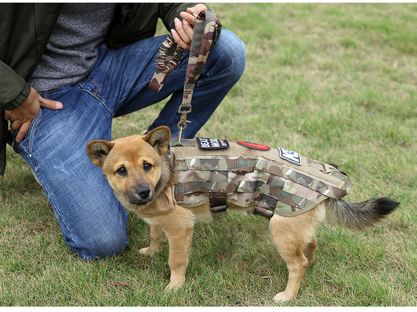 Tactical-Scorpion-Gear-Dog-Leash-Lead-Canine-K9-Military-Training-Vest-Harness thumbnail 11